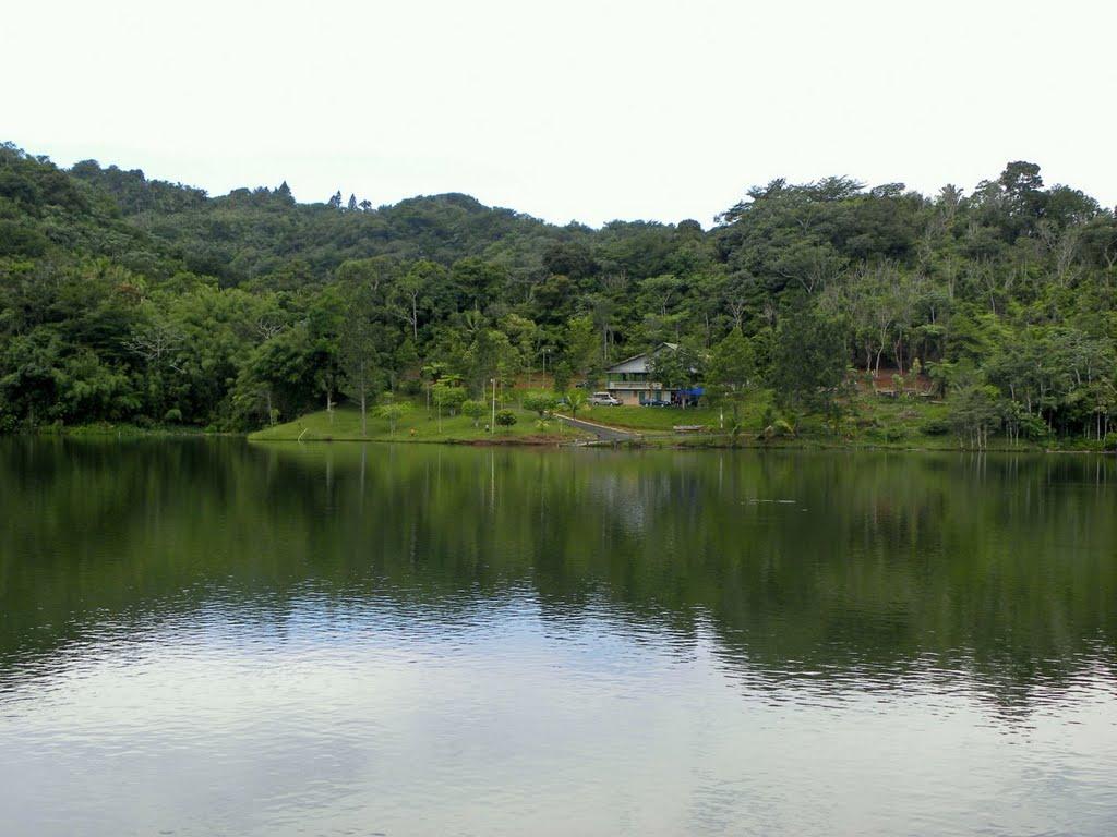 Lago Garzas